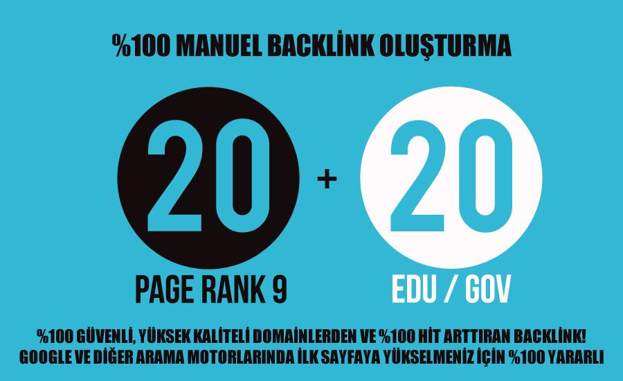 20backlink